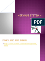 ch 13 3 parts of the brain mod