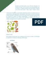 CIENCIAS BIOLOGICAS