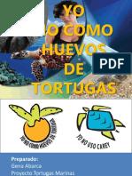 Para Niños  y las tortugas  marinas de nicaragua