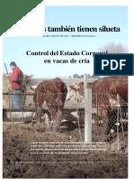 Estado Corporal Vacas de Cria