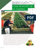 Organic Farming in Lebanon August 2013