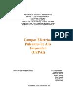 Campos Electricos Pulsantes de Alta Intensidad