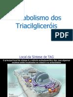 Metabolismo Dos Triacilglicerois