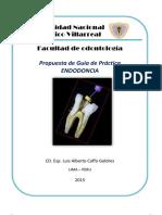 Propuesta Guia de Practica Endodoncia Unfv 2015 Dr Caffo