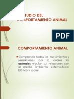 Comportamiento Animal