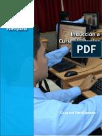 INDUCCION2015.pdf