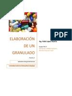 Practica-ElaboracionDeUnGranulado..pdf