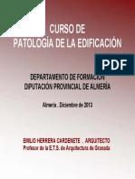 2013 Documentacion Curso Patologia