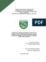 Objeto de La Prueba en Materia de Protección de Niños, Niñas y Adolescentes.