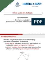 04Vansteelandt (1).pdf