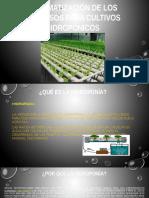 Automatización de Los Procesos Para Cultivos Hidropónicos