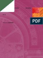T1. La Perspectiva Económica en Las Normas de Información Financiera (BDE 2005)