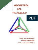 Global Triangulo