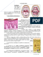 mucosa Oral Gl Salivar ATM