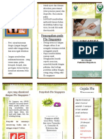 Leaflet Penyuluhan flu singapura