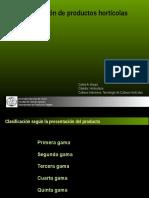 Clasificación de Hortalizas1
