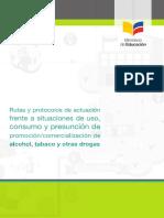 Rutas y Protocolo Drogas
