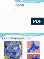 Cocii patogeni