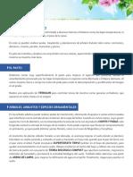 07_labores_julio.pdf