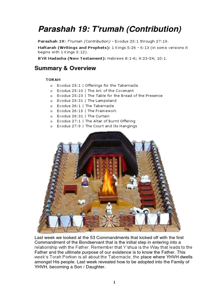 Parashah 19- T'Rumah | Holy Of Holies | Book Of Exodus