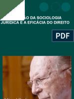 Capítulo 3 - Eficácia Das Normas Jurídicas (1)