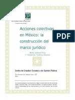 Acciones Colectivas Mexico Docto120 (1)