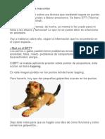 Tapping o EFT Para Mascotas