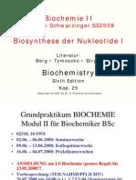 BC II Nukleotidbiosynthese
