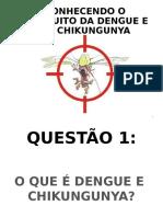 Dengue, shikungunya e zica