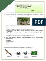 6º Básico 2015 Ciencias Naturales