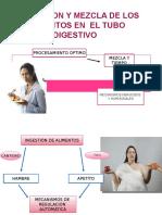 Digestivo Expo Fisio