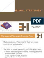 Entrepreneurial Strategies