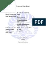 Laporan Praktikum Dinda Amalia KR01