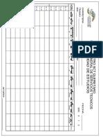 Formato de Aforos Vehiculares Model (1)