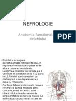 Nefrologie Introducere