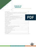 niveles de servicio.pdf