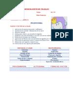 PULPOTOMIA.docx