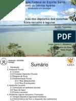 Depositos Fluvio-lacustre e Lagunar