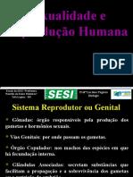 2. Sexualidade e Reprodução Humana