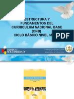 Estructura y Fundamentos Del CNB