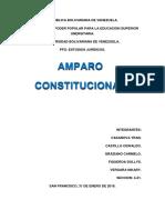 Informe de Amparo Constitucional