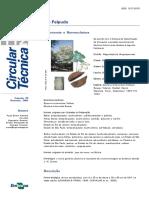Ipê-Felpudo - circtec112.pdf