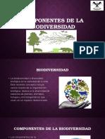 Componentes de La Biodiversidad (1)
