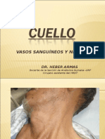 VASOS Y NERVIOS DEL CUELLO.ppt