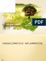 Granulomatous Inflammation (2)