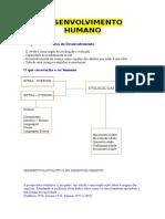 Aula Nº4 - Desenvolvimento Humano