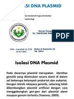 Isolasi DNA Plasmid (Bioteknologi)