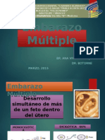 Embarazo Multiple Villy