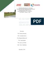 Informe de Gestion Los Haticos 2015