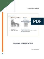 Proyecto Postgrado Informe Pericial UB2014 JUR 19-07-2014